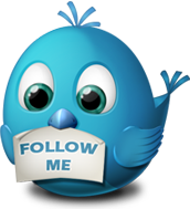 Why Should I Buy Twitter, Facebook and Instagram Followers?